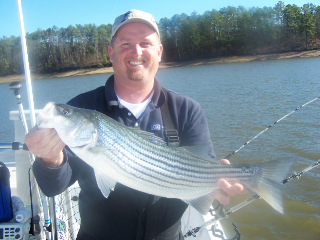 Large Striper Caught at Lake Thurmond